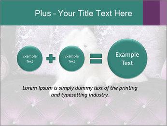 Samoyed dog PowerPoint Template - Slide 75