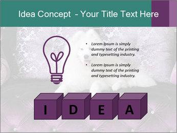 Samoyed dog PowerPoint Template - Slide 80