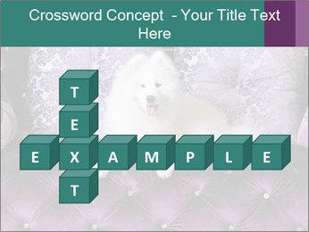 Samoyed dog PowerPoint Template - Slide 82