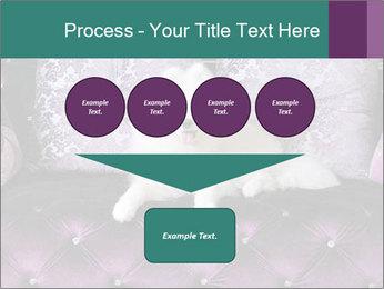 Samoyed dog PowerPoint Template - Slide 93