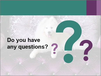 Samoyed dog PowerPoint Templates - Slide 96