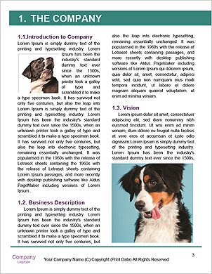 0000093279 Word Template - Page 3