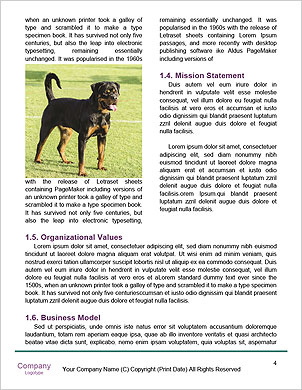 0000093279 Word Template - Page 4