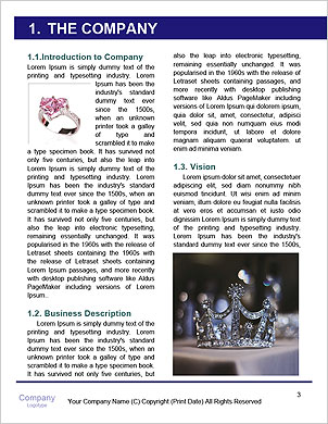 0000093280 Word Template - Page 3