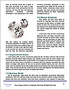 0000093280 Word Templates - Page 4