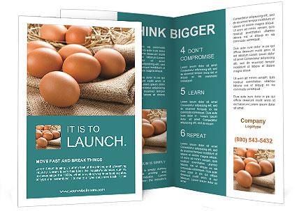 0000093287 Brochure Templates