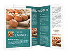 0000093287 Brochure Template