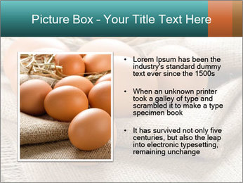 Eggs PowerPoint Template - Slide 13