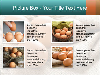 Eggs PowerPoint Template - Slide 14