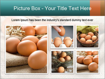 Eggs PowerPoint Template - Slide 19