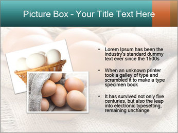Eggs PowerPoint Template - Slide 20