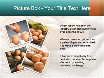 Eggs PowerPoint Template - Slide 23