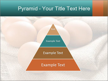 Eggs PowerPoint Template - Slide 30