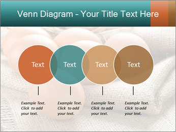 Eggs PowerPoint Template - Slide 32