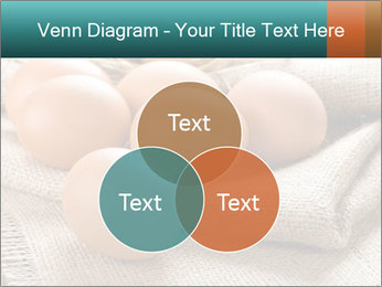 Eggs PowerPoint Template - Slide 33