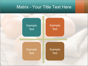 Eggs PowerPoint Template - Slide 37