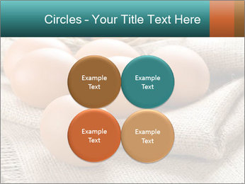 Eggs PowerPoint Template - Slide 38