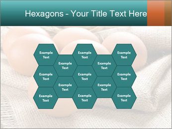 Eggs PowerPoint Template - Slide 44