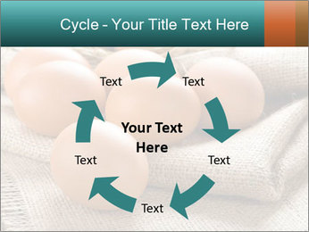 Eggs PowerPoint Template - Slide 62