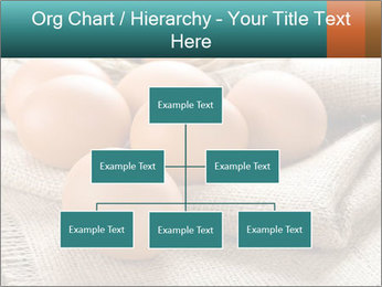 Eggs PowerPoint Template - Slide 66