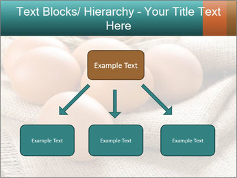 Eggs PowerPoint Template - Slide 69
