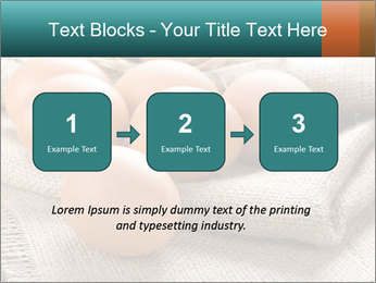 Eggs PowerPoint Template - Slide 71