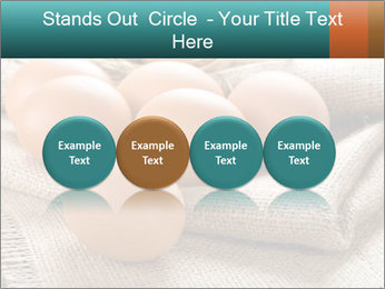 Eggs PowerPoint Template - Slide 76