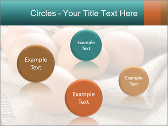 Eggs PowerPoint Template - Slide 77
