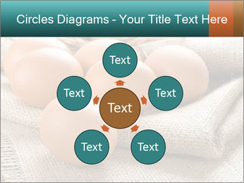 Eggs PowerPoint Template - Slide 78