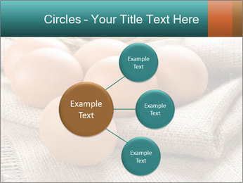 Eggs PowerPoint Template - Slide 79