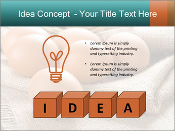 Eggs PowerPoint Template - Slide 80