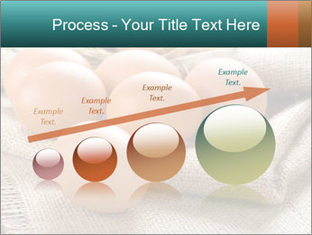Eggs PowerPoint Template - Slide 87