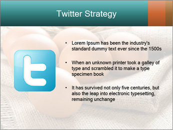Eggs PowerPoint Template - Slide 9