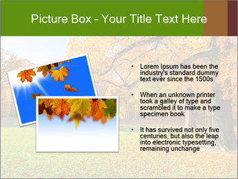 Autumn Landscape PowerPoint Template - Slide 20