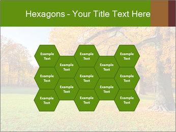 Autumn Landscape PowerPoint Template - Slide 44