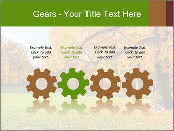 Autumn Landscape PowerPoint Template - Slide 48