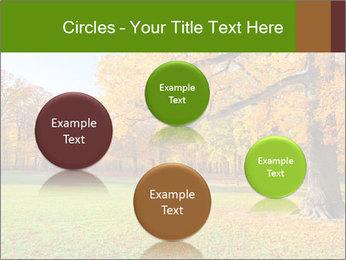 Autumn Landscape PowerPoint Template - Slide 77