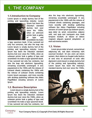 0000093293 Word Template - Page 3