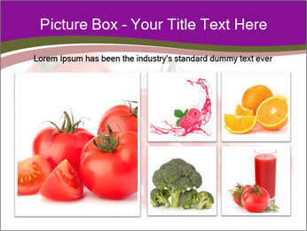 Tomato vegetables PowerPoint Template - Slide 19