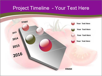 Tomato vegetables PowerPoint Template - Slide 26