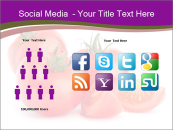 Tomato vegetables PowerPoint Template - Slide 5