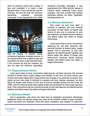 0000093316 Word Template - Page 4