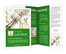 0000093317 Brochure Templates