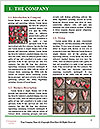 0000093332 Word Template - Page 3
