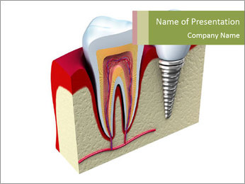 Anatomy of healthy teeth PowerPoint Template