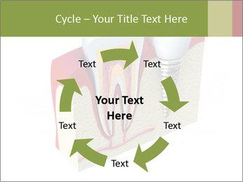 Anatomy of healthy teeth PowerPoint Template - Slide 62