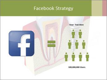 Anatomy of healthy teeth PowerPoint Template - Slide 7