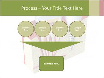 Anatomy of healthy teeth PowerPoint Template - Slide 93