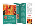 0000093341 Brochure Templates