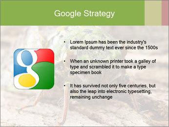 Green Cicada PowerPoint Template - Slide 10